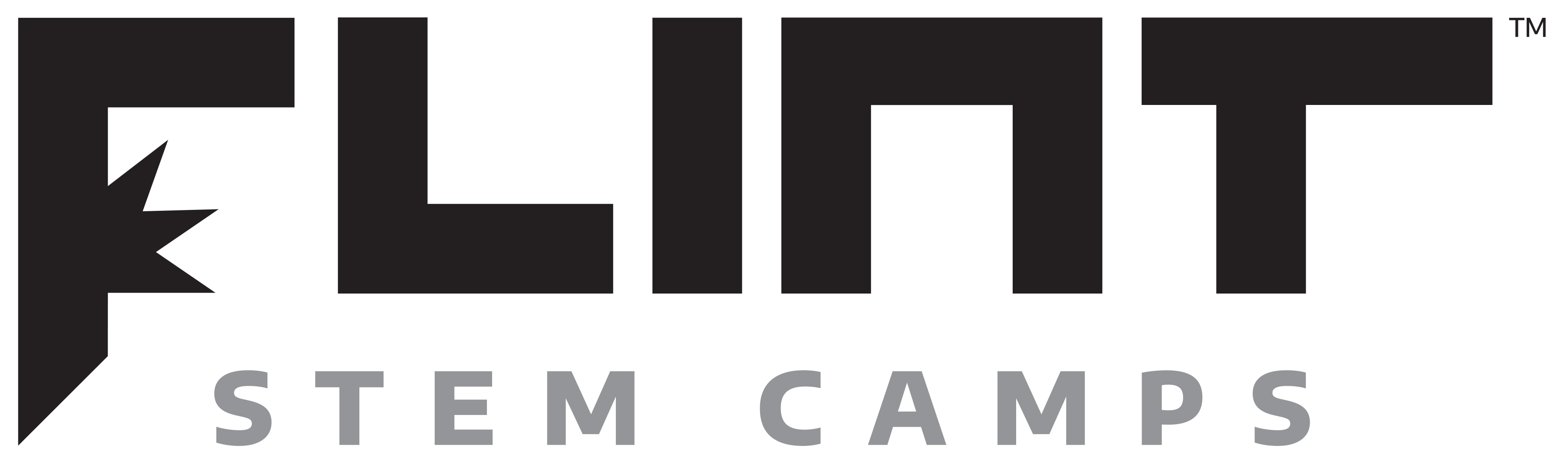 Flint STEM Camps logo